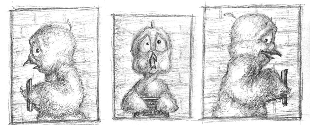 Detail of sketches of Chicken Licken posing for mugshots